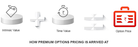 How are Premium Options Calculated By Kotak Securities®